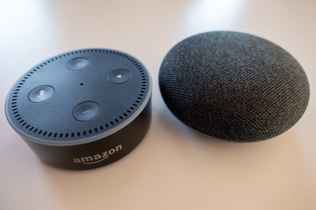 amazon echo google home mini